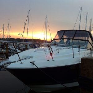Monterey 290/315